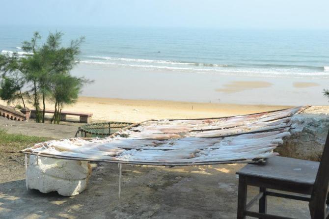Biển Thiên Cẩm với hải sản tươi ngon